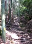 愛宕山登山2-18
