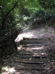 愛宕山登山2-25
