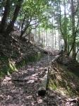 愛宕山登山2-24
