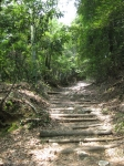 愛宕山登山3-05