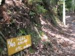 愛宕山登山3-09