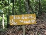 愛宕山登山3-23