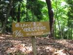 愛宕山登山4-02