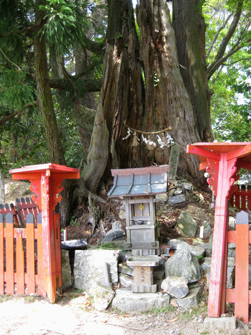 愛宕山登山4-06