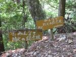 愛宕山登山4-25
