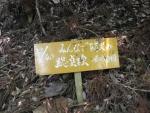 愛宕山登山4-23