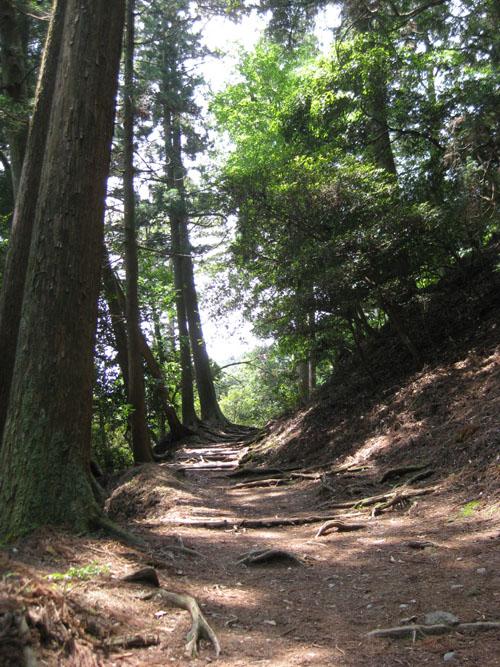 愛宕山登山4-32