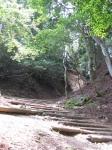 愛宕山登山5-06