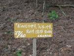 愛宕山登山5-02