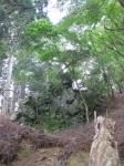 愛宕山登山5-05