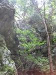 愛宕山登山5-09