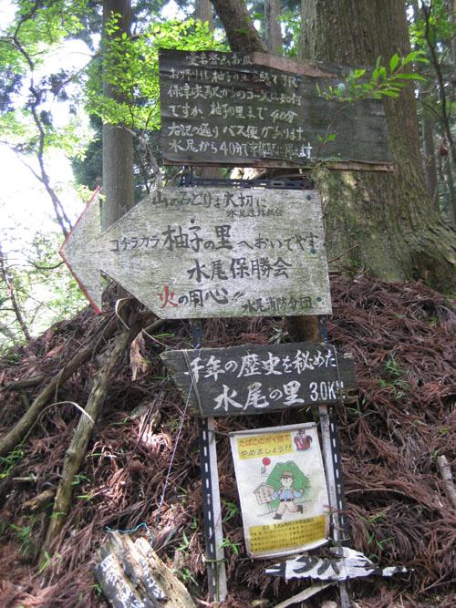 愛宕山登山5-20