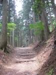 愛宕山登山5-21