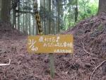愛宕山登山5-22