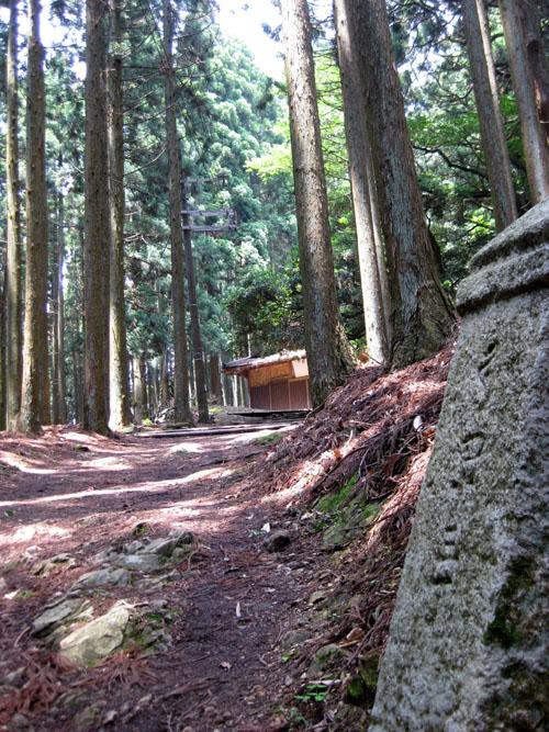 愛宕山登山5-25
