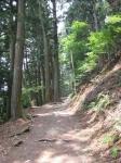 愛宕山登山5-33