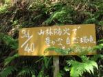 愛宕山登山5-35