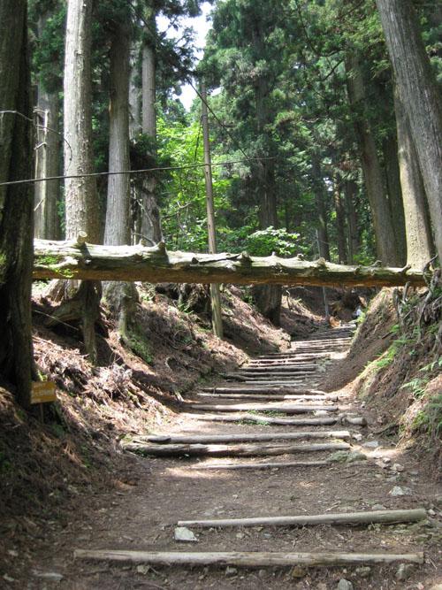 愛宕山登山6-08