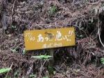 愛宕山登山6-12