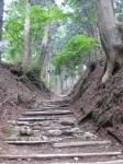 愛宕山登山6-14