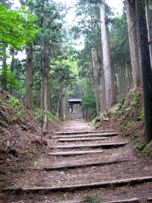 愛宕山登山6-16
