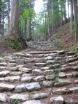 愛宕山登山6-24