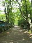 愛宕山登山6-30