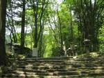 愛宕山登山6-29