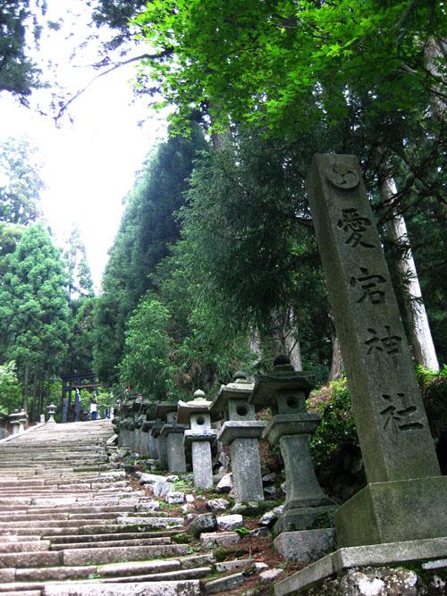 愛宕神社-本殿(京都)01