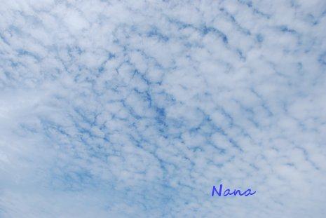 sky1-2.jpg