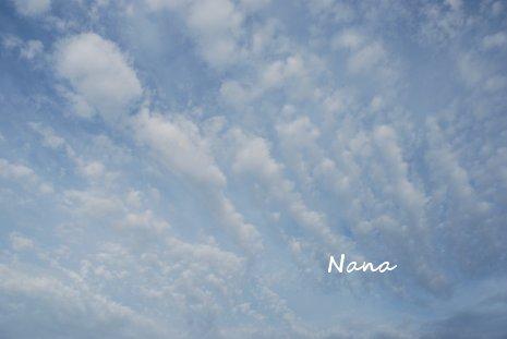 sky1-4.jpg