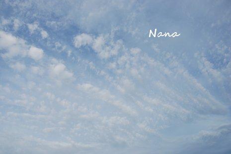 sky1-5.jpg