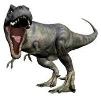 rex_convert_20140527122740.jpg