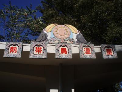 oohashi02.jpg