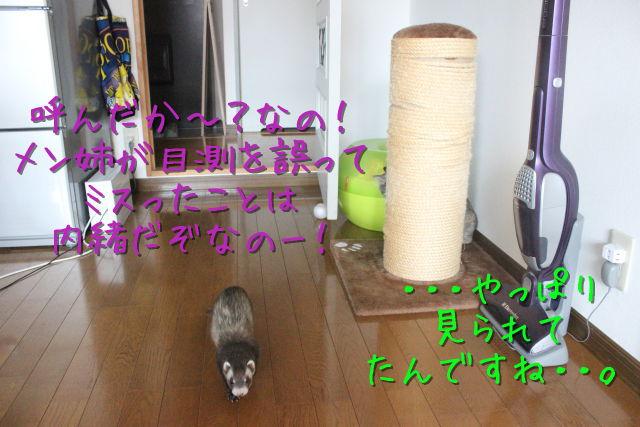 kako-CIagOm01GYWg37Xc.jpg