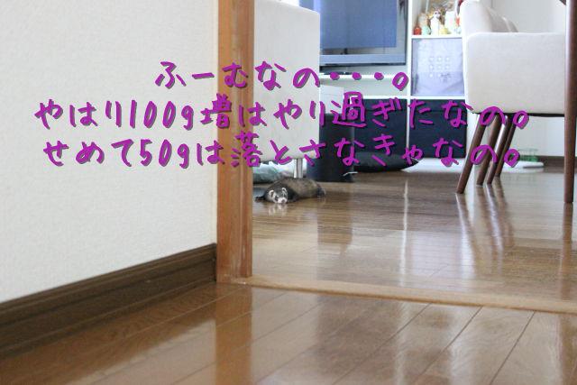 kako-EKerPl6xw01FI1dZ.jpg