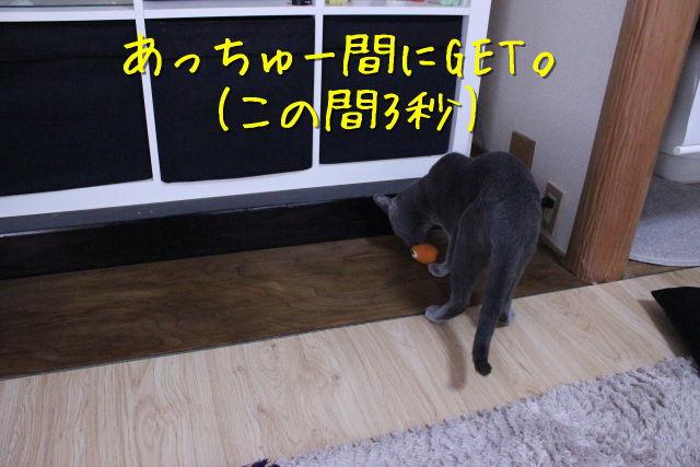 kako-enMeqJxD70B91FCl.jpg