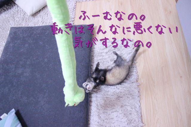 kako-lXTb8iC5shgoU1DX.jpg