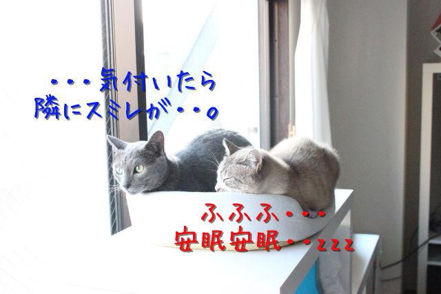 kako-rFX4M7Uqs3J8BjIj.jpg
