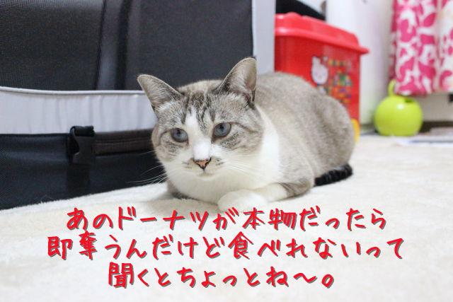 kako-yN5XQAwfaIoRHuM5.jpg