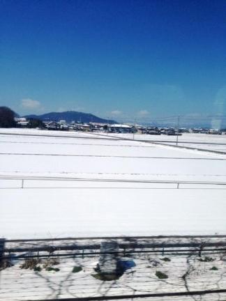 hikoneyuki.jpg