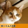 pet2014-04-01-11-16808822823_th123.jpg