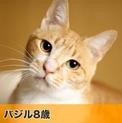 pet2014-04-01-9-101960381369_th123.jpg