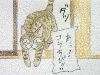 男子禁制ニャ!1