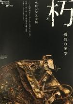 2014mizuno1.jpg