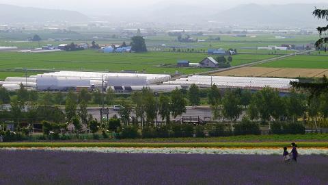 ファーム富田 2014