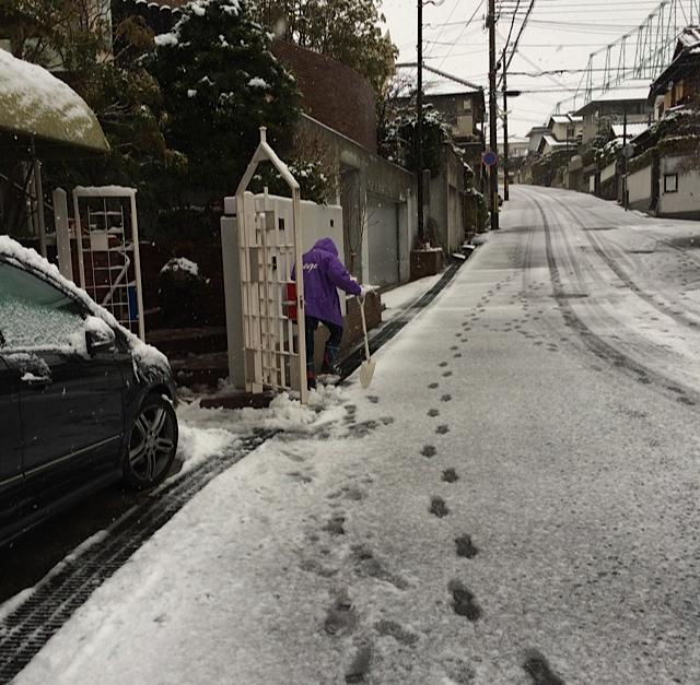 文男雪かき