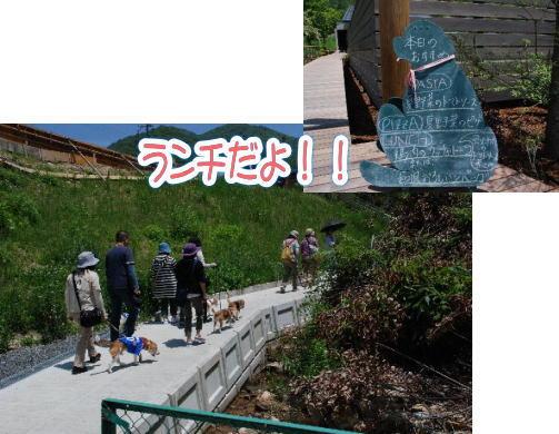 2014・06・01能勢ラン3a