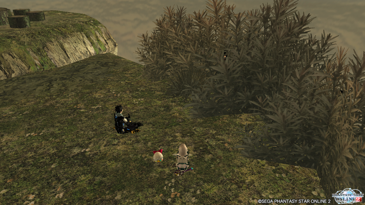pso20140528_004807_005.png