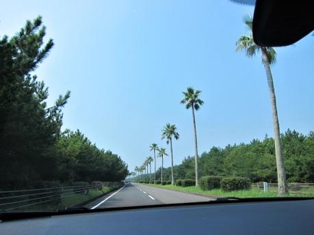 青島までドライブ